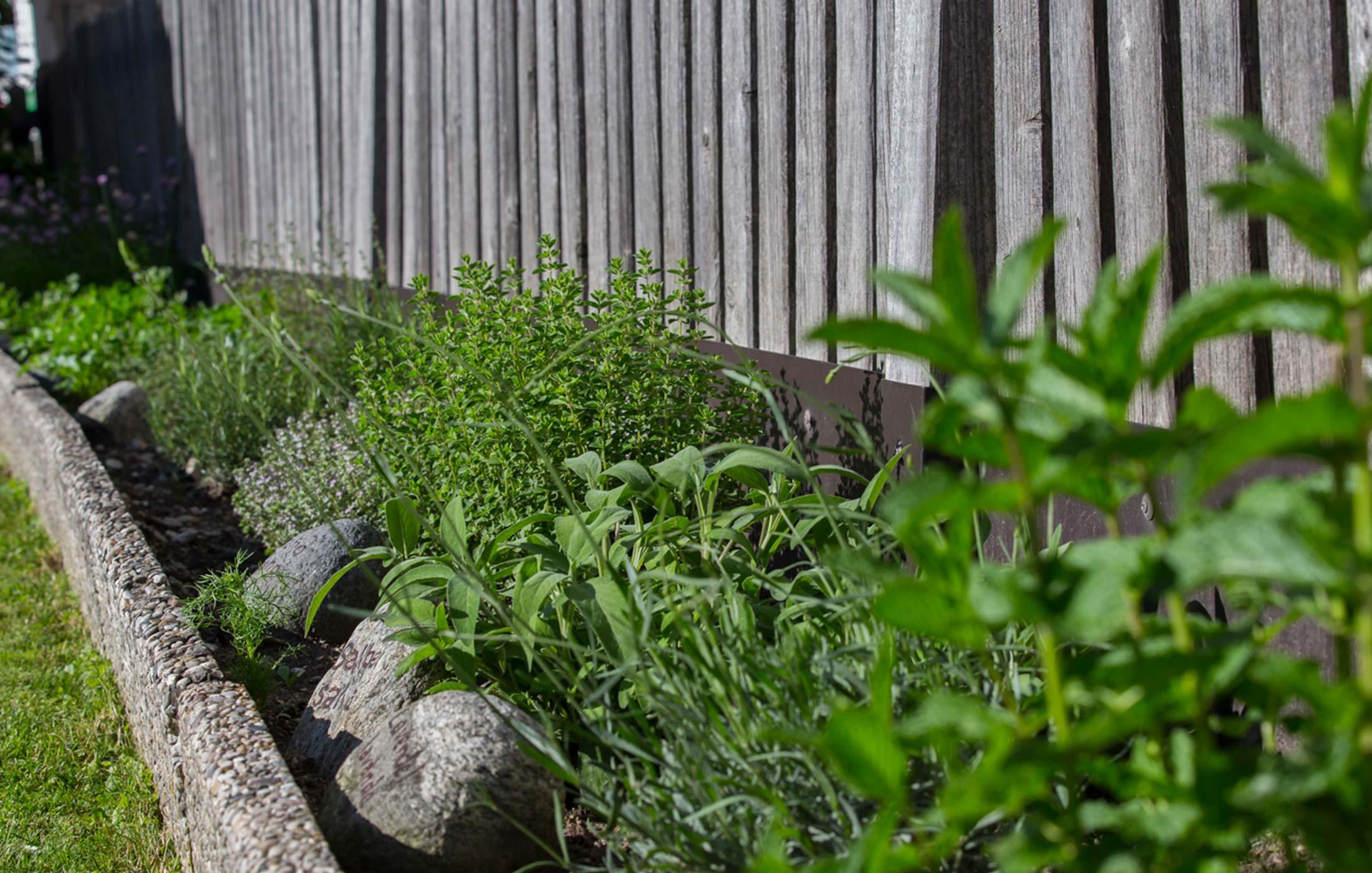Christlrumerhof Unsere Produkte unser Kräutergarten