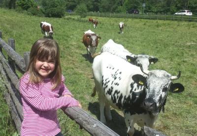 Christlrumerhof Unsere Tiere Kind Kühe