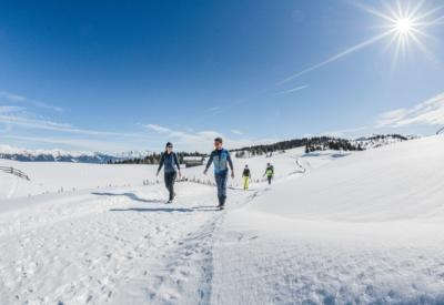 Winter Wandern 2 ©Harald Wisthaler